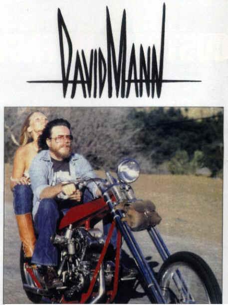about david mann art